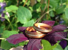 Dark Walnut rings with Cherry wood liners and Greyed Maple inlaid bands
